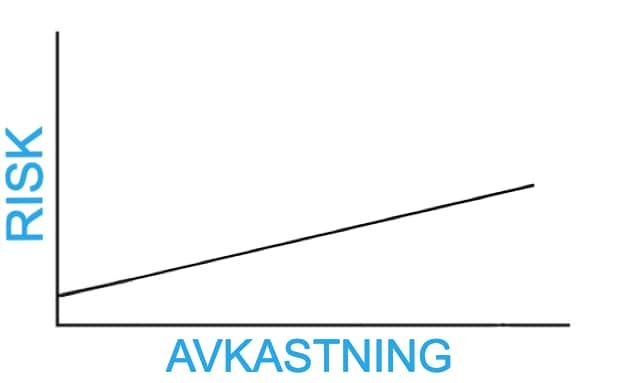 risktagande investeringar