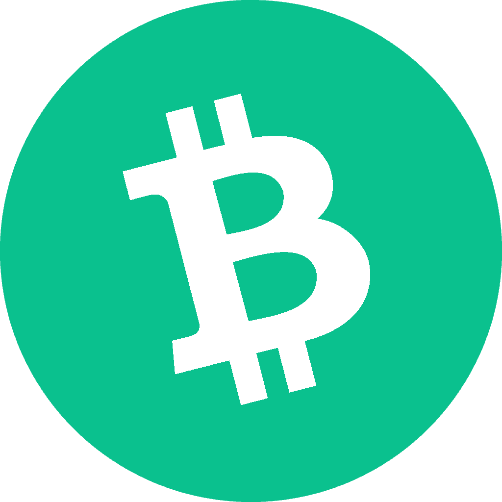 De vanligaste nackdelarna med Bitcoin Cash