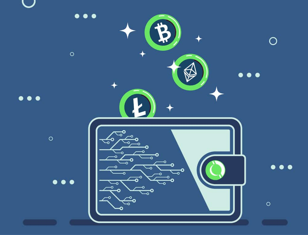 Lagra dina mynt i en kryptoplånbok