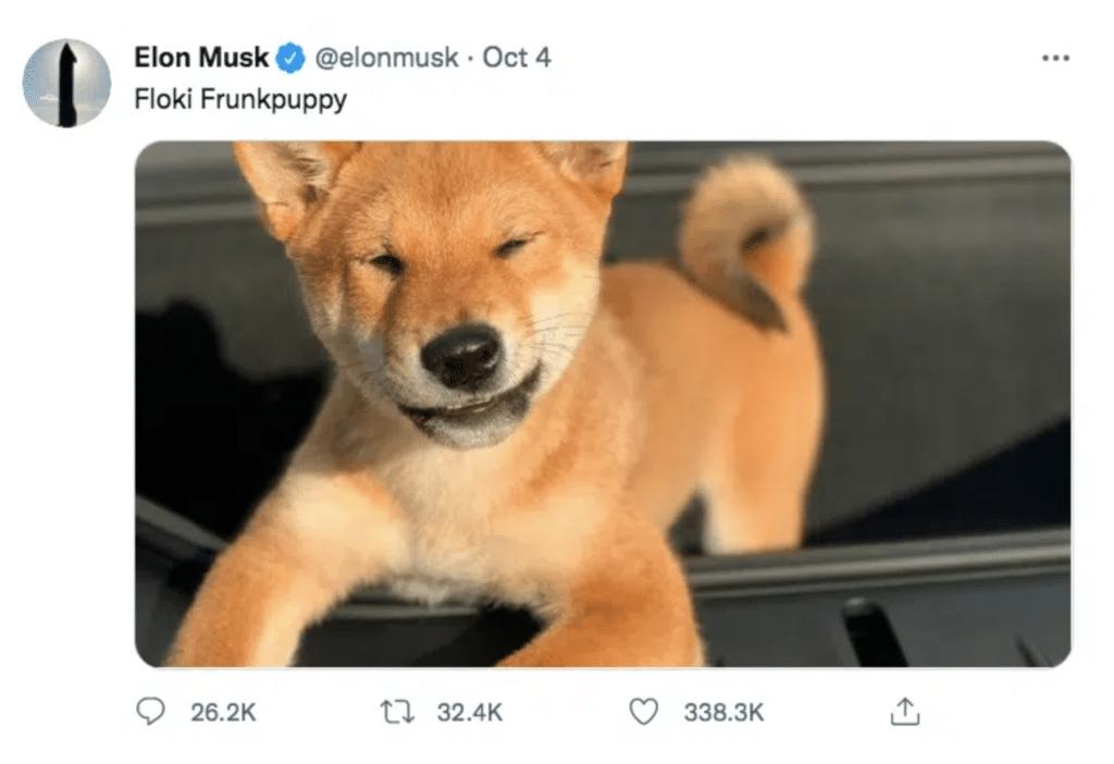 Shiba Inu rusar efter Musks tweet